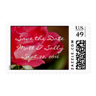 PK Knockout Rose Stamp- customize