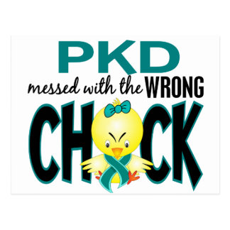 PKD Messed With The Wrong Chick Postcard