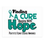 PKD Polycystic Kidney Disease HOPE 5 Postcards