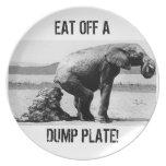 Placa #2 de la descarga platos para fiestas
