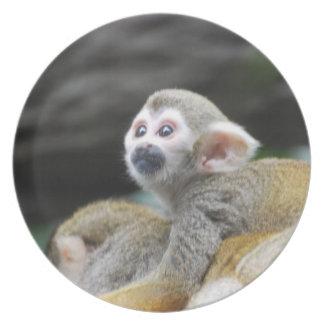 Placa adorable del mono de ardilla platos para fiestas