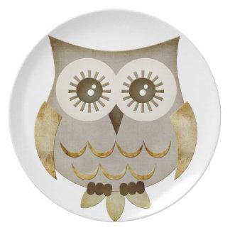 Placa ancha del búho de los ojos plato de cena