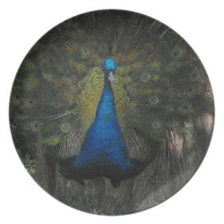 Placa AUDAZ de la melamina del PAVO REAL Plato De Cena