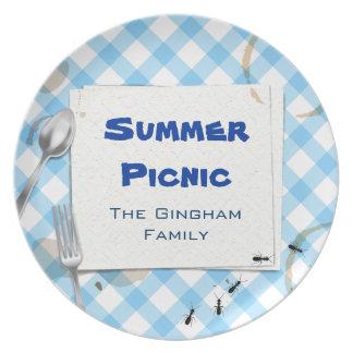 Placa azul del Bbq de la comida campestre de la gu Platos Para Fiestas