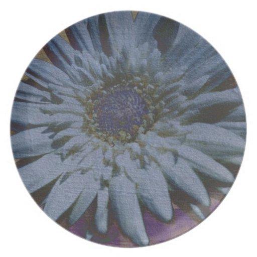 Placa blanca de la margarita del Gerbera Plato De Comida