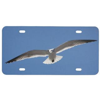 Placa blanca del pájaro de la gaviota de la placa de matrícula