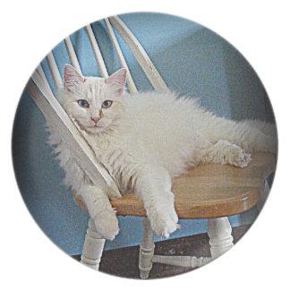 placa blanca encantadora del gato platos para fiestas