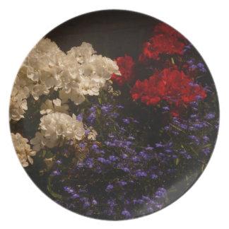 Placa blanca y azul roja plato