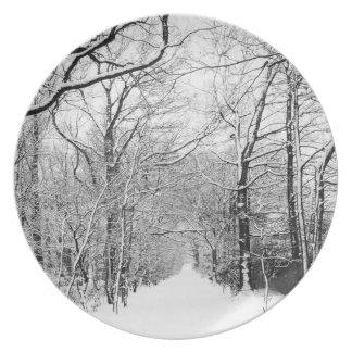 Placa blanco y negro del camino de la nieve plato de cena