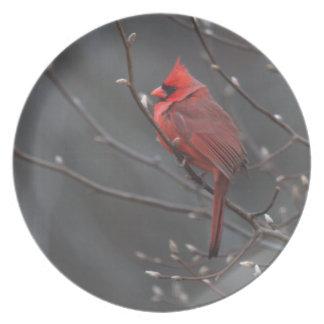 Placa cardinal encaramada platos