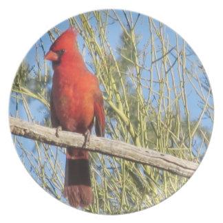 Placa cardinal plato para fiesta