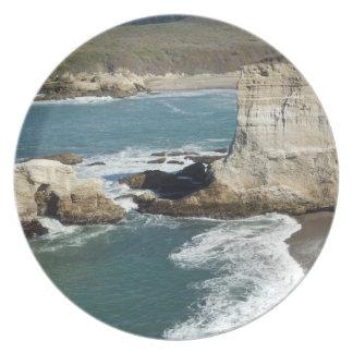 Placa central de la costa platos para fiestas