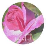 Placa color de rosa rosada de octubre plato de cena