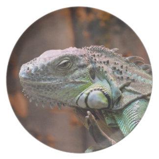 Placa con el lagarto colorido de la iguana platos