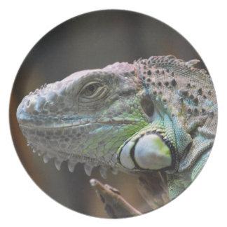Placa con la cabeza del lagarto colorido de la plato para fiesta