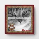 Placa conmemorativa de la foto del gato persa