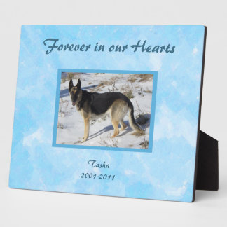 Placa conmemorativa de la foto del mascota del cie
