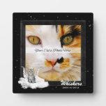 Placa conmemorativa de la foto del mascota del gat
