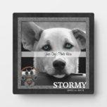 Placa conmemorativa de la raza del perro de Staffo