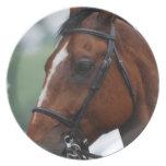 Placa cuarta del perfil del caballo platos para fiestas