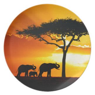 Placa de África 2 Platos