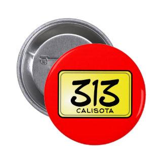 Placa de Calisota 313 Pin