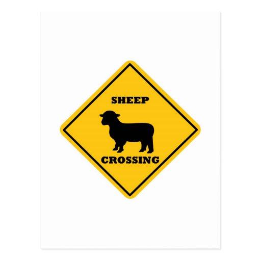 Placa de calle de la travesía de las ovejas tarjetas postales