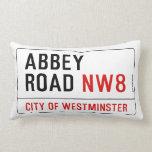Placa de calle del camino de la abadía almohadas