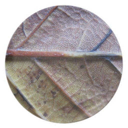 Placa de cena de la hoja del otoño de Nutural Plato