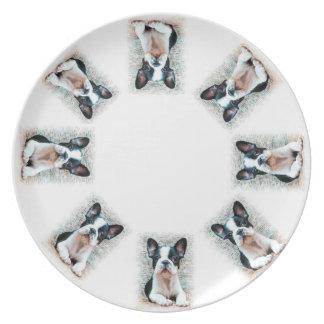 Placa de cena de los dogos franceses plato de cena