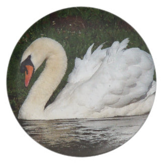 Placa de cena del pájaro del cisne platos para fiestas