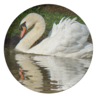 Placa de cena del pájaro del cisne platos de comidas
