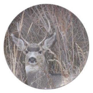 Placa de cena ocultada de los ciervos del dólar platos de comidas