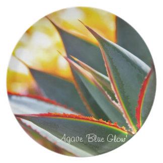 Placa de cena suculenta de la planta: Agavo 'Glow  Plato