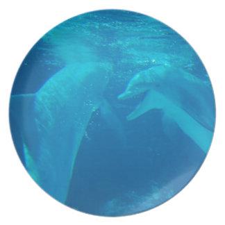 Placa de charla de los pares del delfín plato