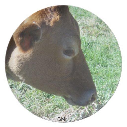 Placa de colección de la vaca de Brown por GMH Plato