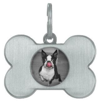 Placa de identificación de Boston Terrier Placa De Nombre De Mascota