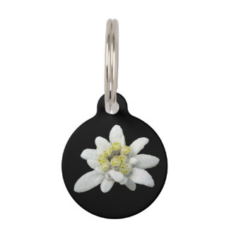 Placa de identificación floral de Edelweiss Placas Para Mascotas