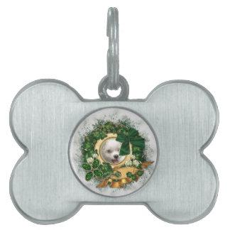 Placa de identificación irlandesa placas de mascota