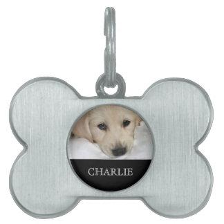 Placa de identificación personalizada de la foto y placa de mascota