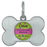 Placa de identificación personalizada del hueso de placa de nombre de mascota