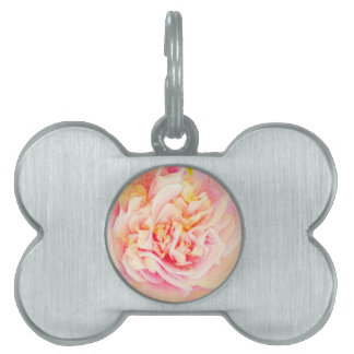 Placa de identificación rosada del sueño de la placa de nombre de mascota