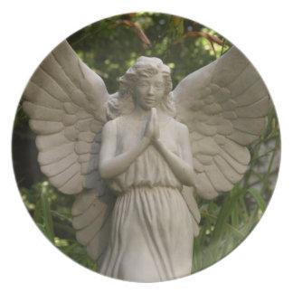 Placa de Jayn del ángel Plato De Comida