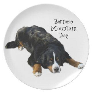 Placa de la actitud de la manta del perro de monta plato de cena