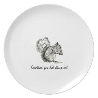 Placa de la ardilla plato para fiesta