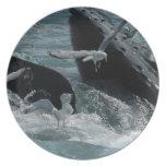 Placa de la ballena jorobada plato