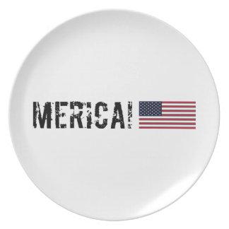 'Placa de la bandera de Merica los E.E.U.U. Platos Para Fiestas