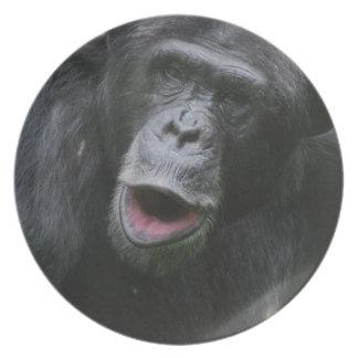 Placa de la charla del chimpancé platos para fiestas