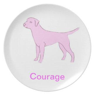 Placa de la conciencia del cáncer del valor del la platos para fiestas