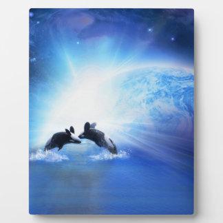 Placa de la danza de la orca